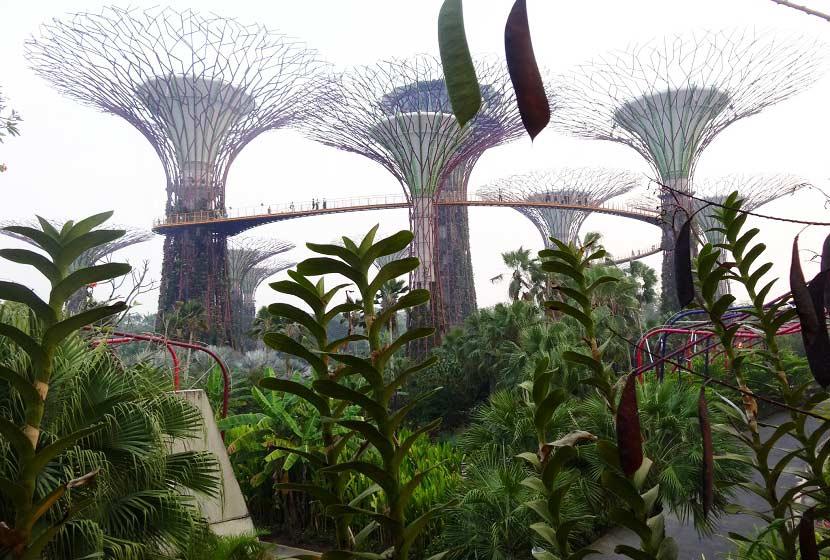 architecture et urbanisme