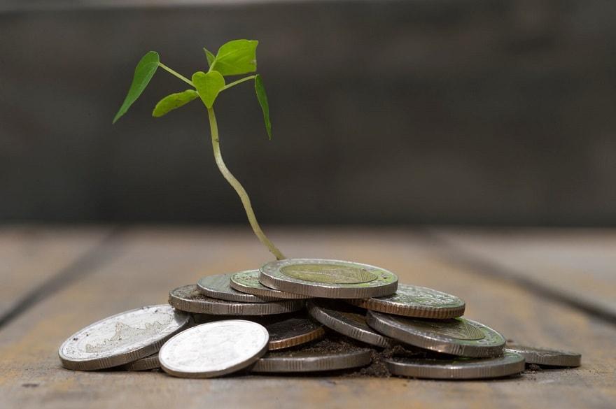 écologie-économie
