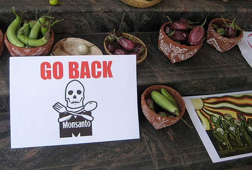 Monsanto Court