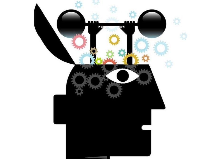 cerveau agile