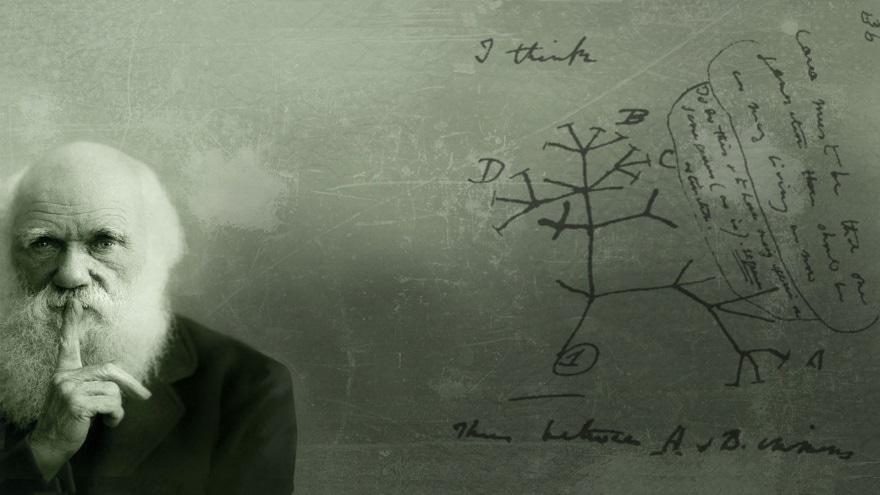 théorie de l'évolution