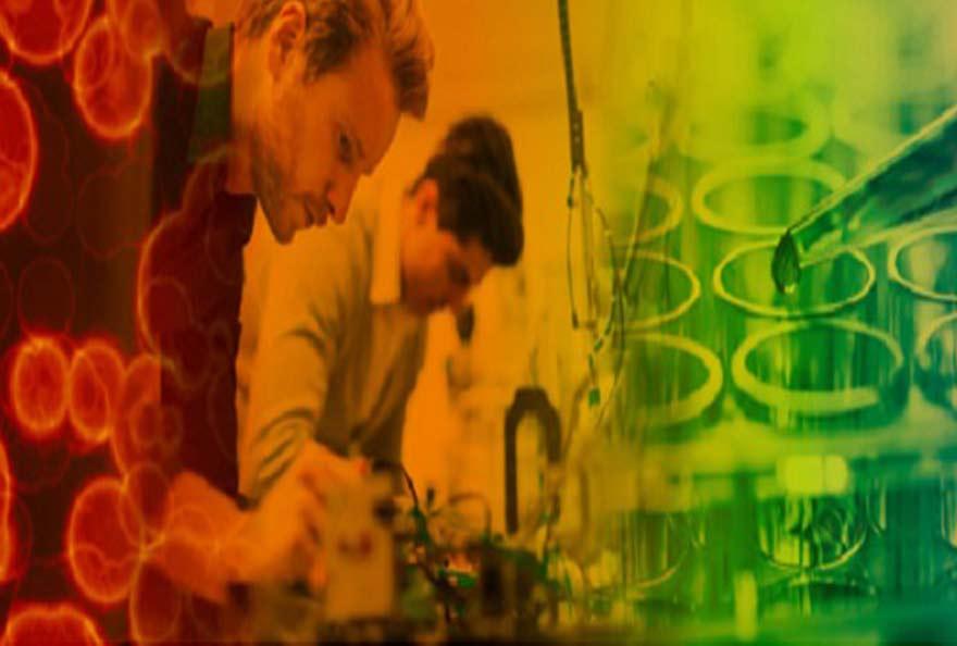 synthese bio
