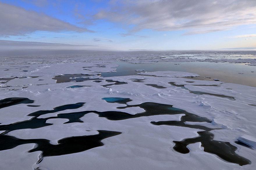 Arctique pollution