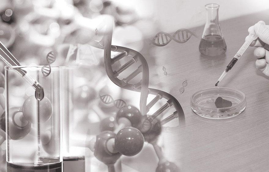 variants génomiques