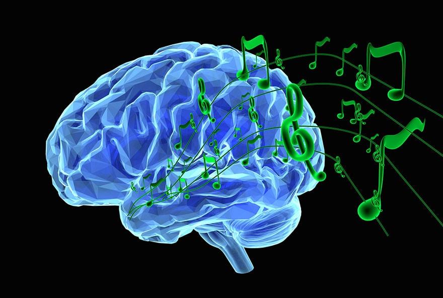 cerveau musique