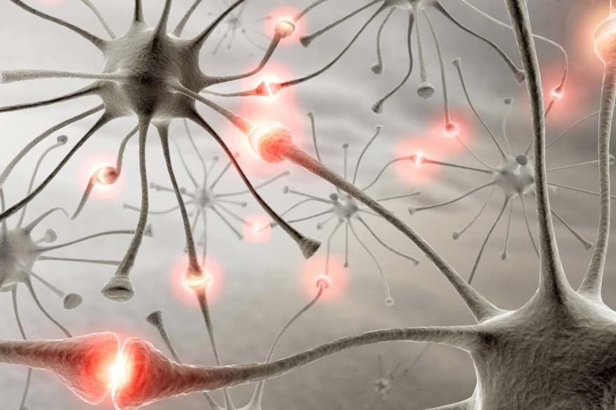 douleurs neuropathiques