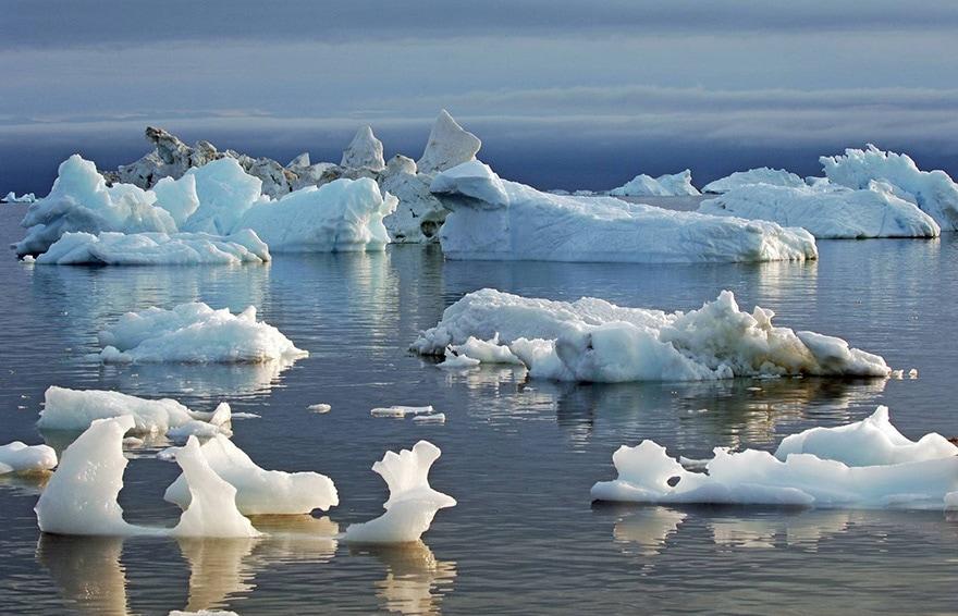 fonte Arctique