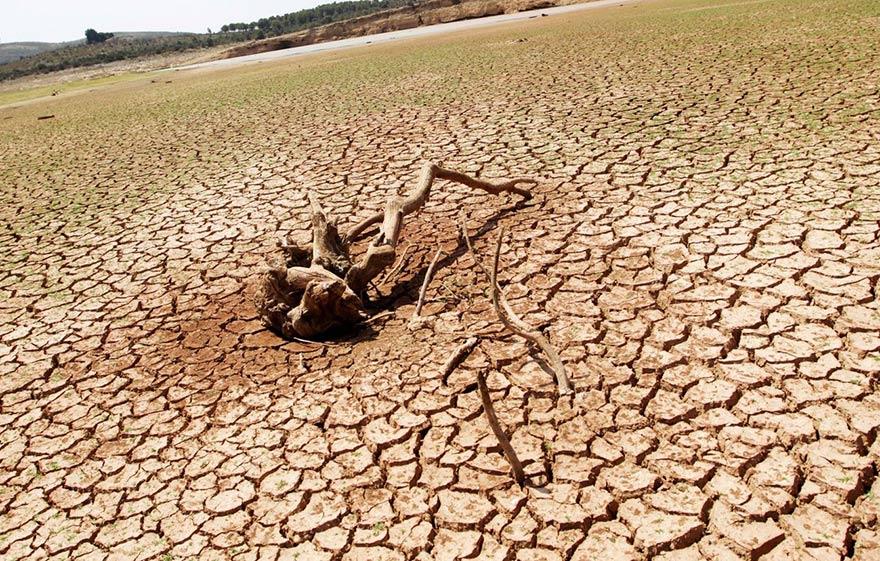 Iraqi drought