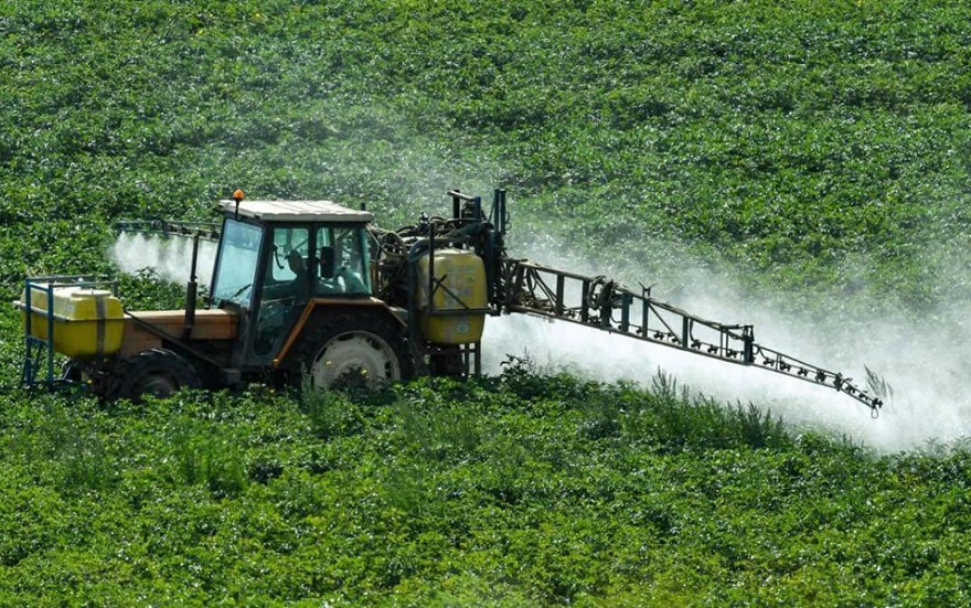 glyphosate application