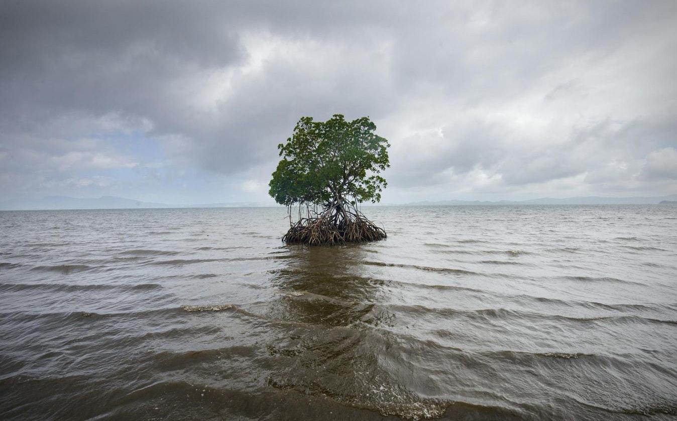 Rapport du GIEC sur les océans : rien ne va plus