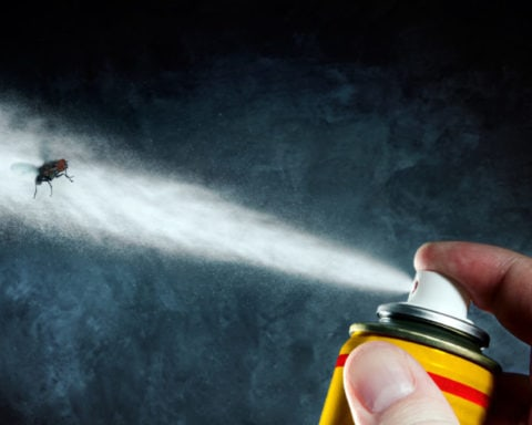 Des pesticides plein nos placards