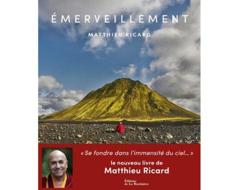 Wonder - Matthieu Ricard