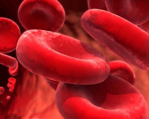passive antibody therapy