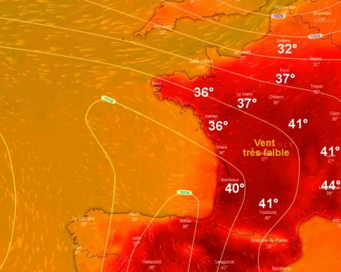 Heat wave + pandemic: UN warns of public health risks this summer