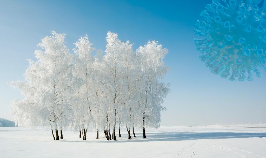 Covid-19 : Faut-il craindre l'arrivée de l'hiver ?
