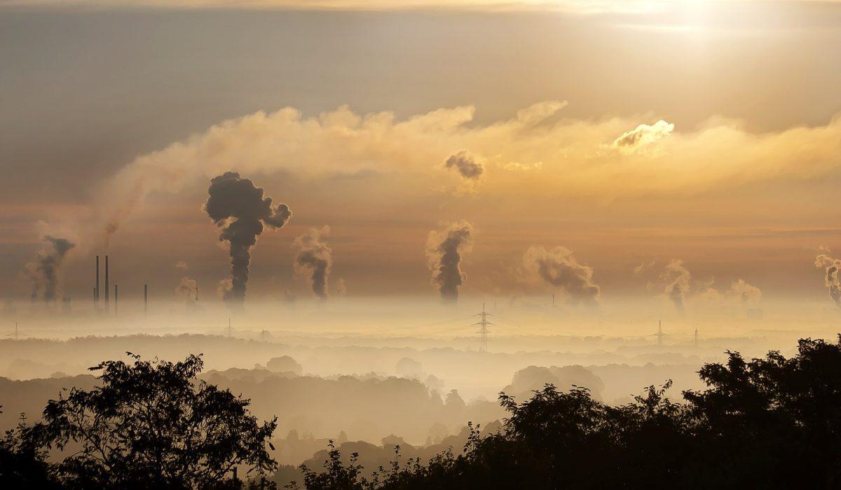 Le tueur invisible : la pollution de l'air a causé 4 fois plus de morts que le Covid en un an