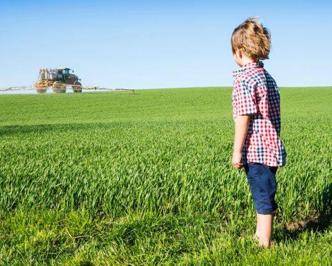 Un tiers des terres agricoles sont polluées par les pesticides qui enrichissent les géants de l'agrochimie