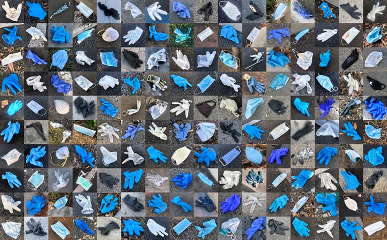 Nos déchets de la pandémie tuent la faune sauvage à une échelle dévastatrice