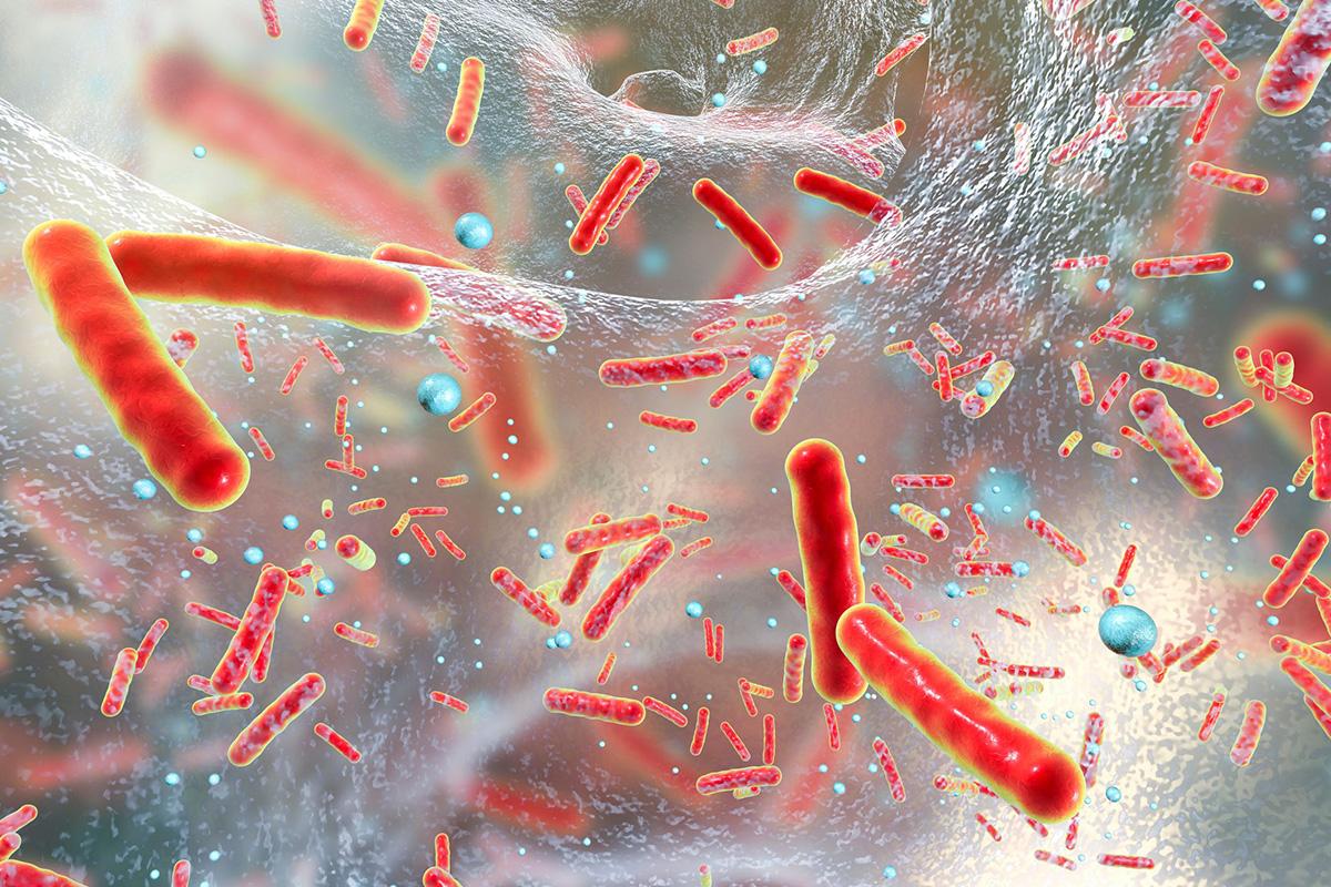 Des nanoparticules pour venir à bout des bactéries résistantes aux antibiotiques