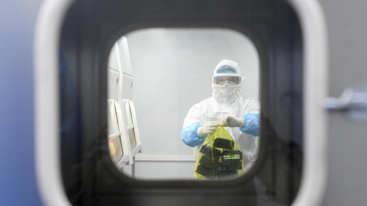 Covid-19 : L'hypothèse de l'accident de laboratoire ne doit pas être enterrée