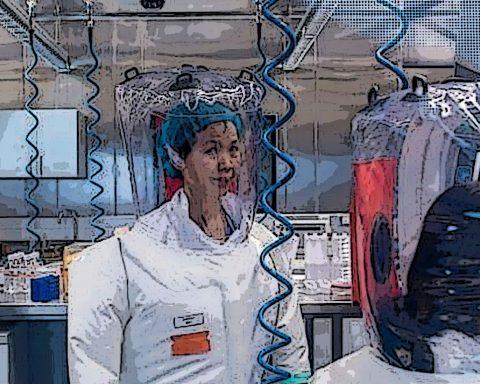 Comment des scientifiques américains et chinois ont fabriqué des coronavirus pendant des années