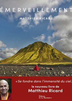 Emerveillement - Matthieu Ricard