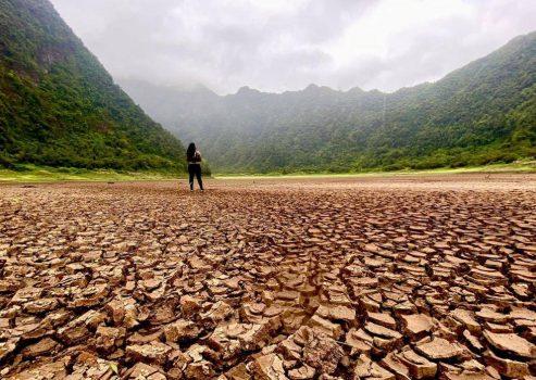 Les catastrophes climatiques de 2021 sonnent l'alarme sur la sécurité alimentaire